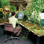 做个环保主义的程序员